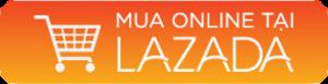 Lazada 1 300x77 - Trang Chủ