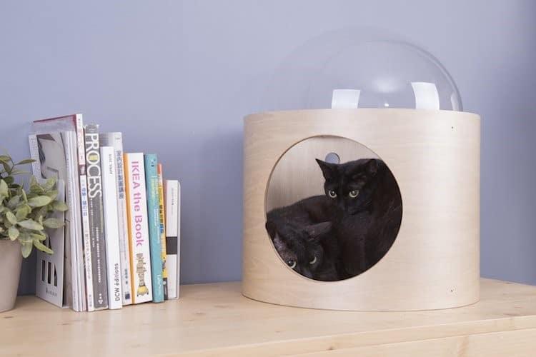 Nệm cho mèo