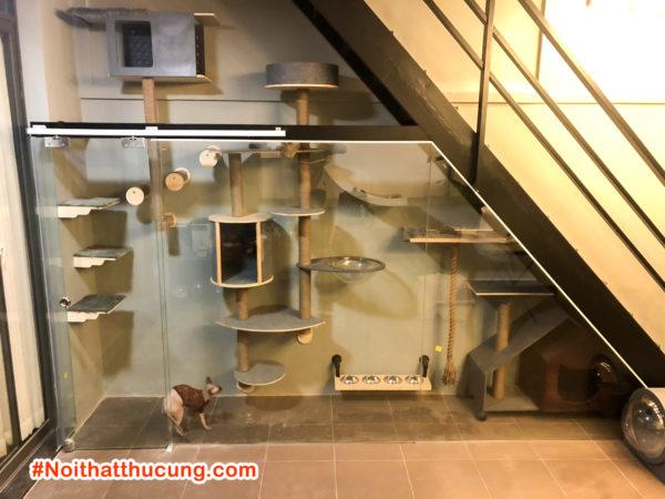 Nhà cho mèo dưới chân cầu thang