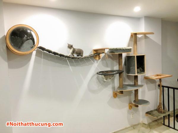 Nhà mèo trên tường #CZ004